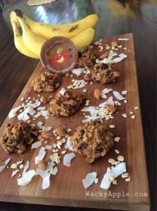 Healthy Applesauce Chocolate chip cookies